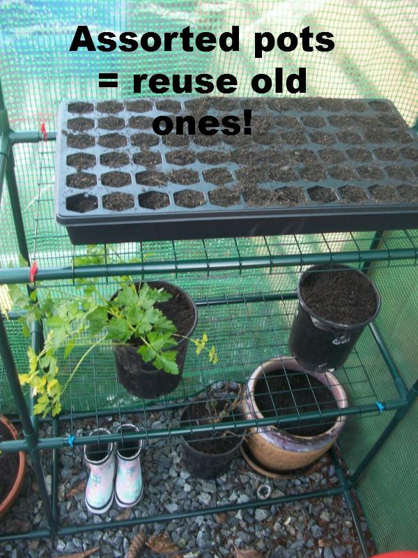 greenhousebanner2