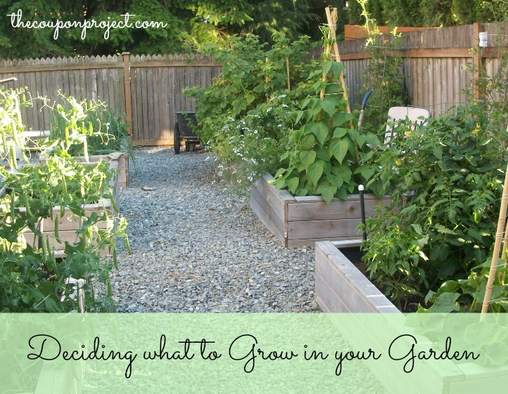 How to Decide what to Grow in your Garden | The Coupon Project