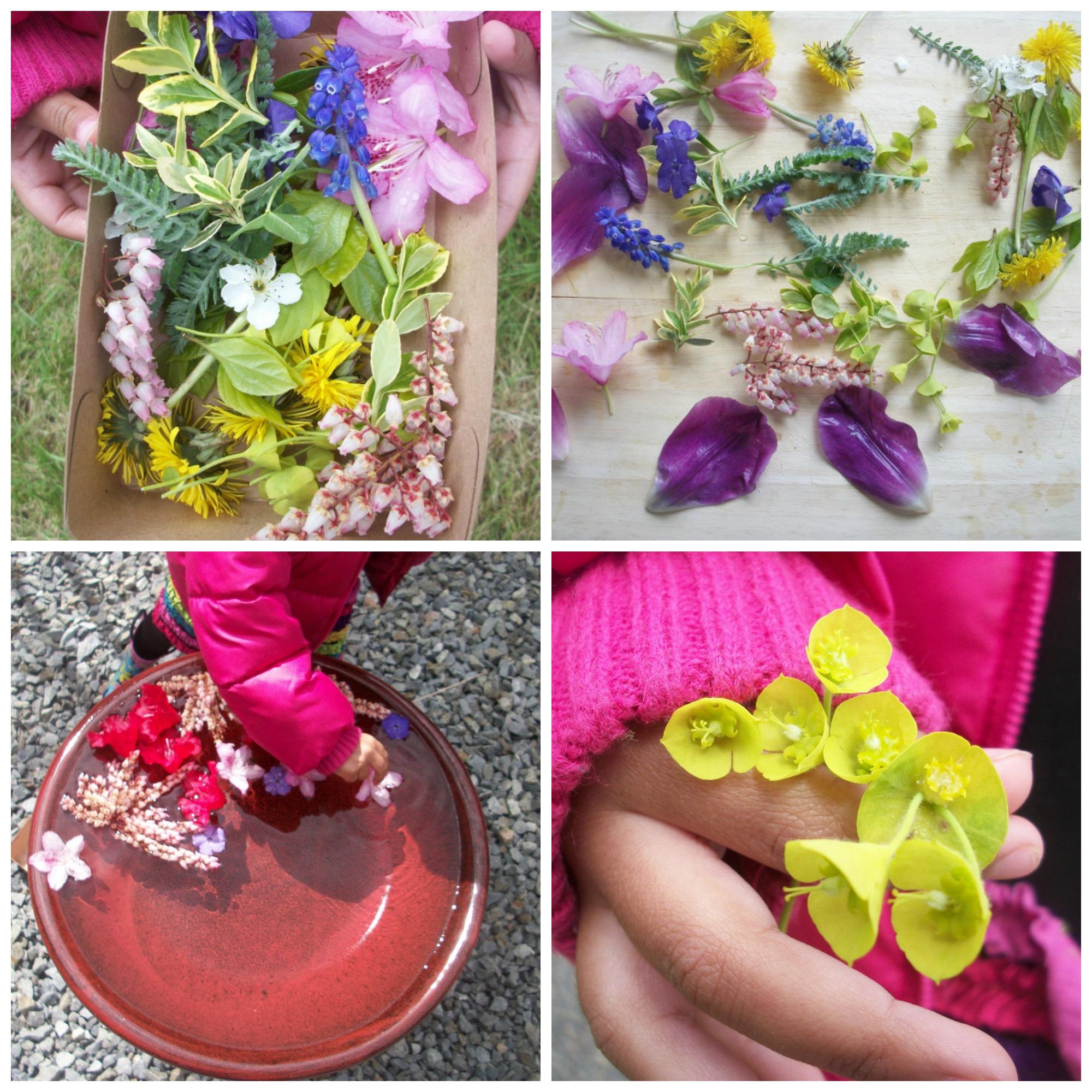 springflowers