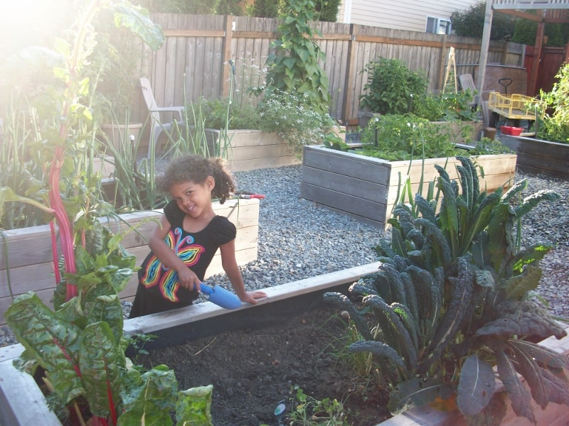 Frugal gardening four inexpensive raised bed ideas the - Safest material for raised garden beds ...