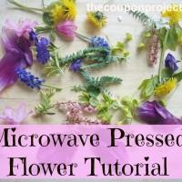 Microwave Pressed Flower Tutorial
