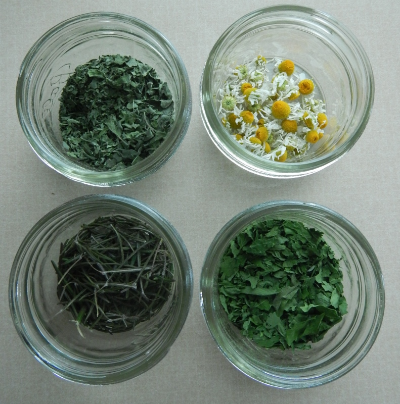 Dried Herbs | The Coupon Project