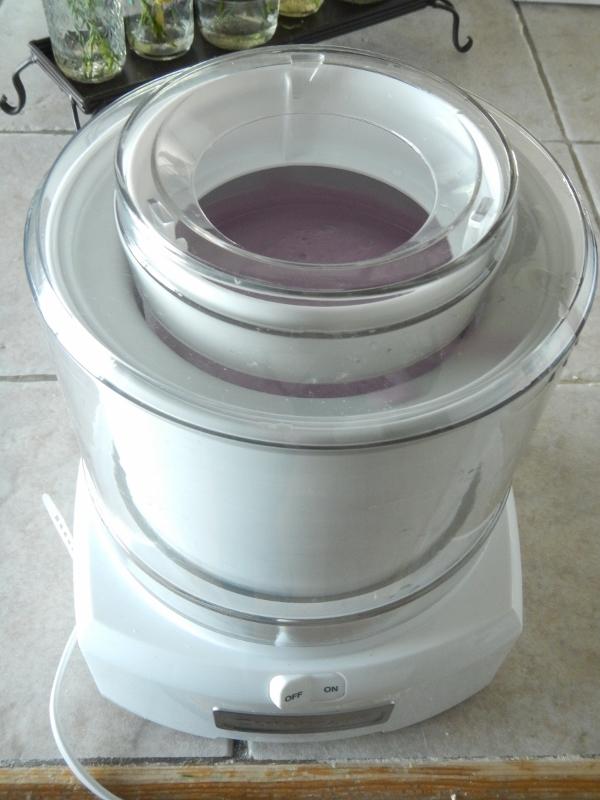 DSCN0757 (600x800)