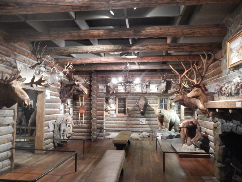 Our Visit to the Buffalo Bill Center of the West (Cody, Wyoming)