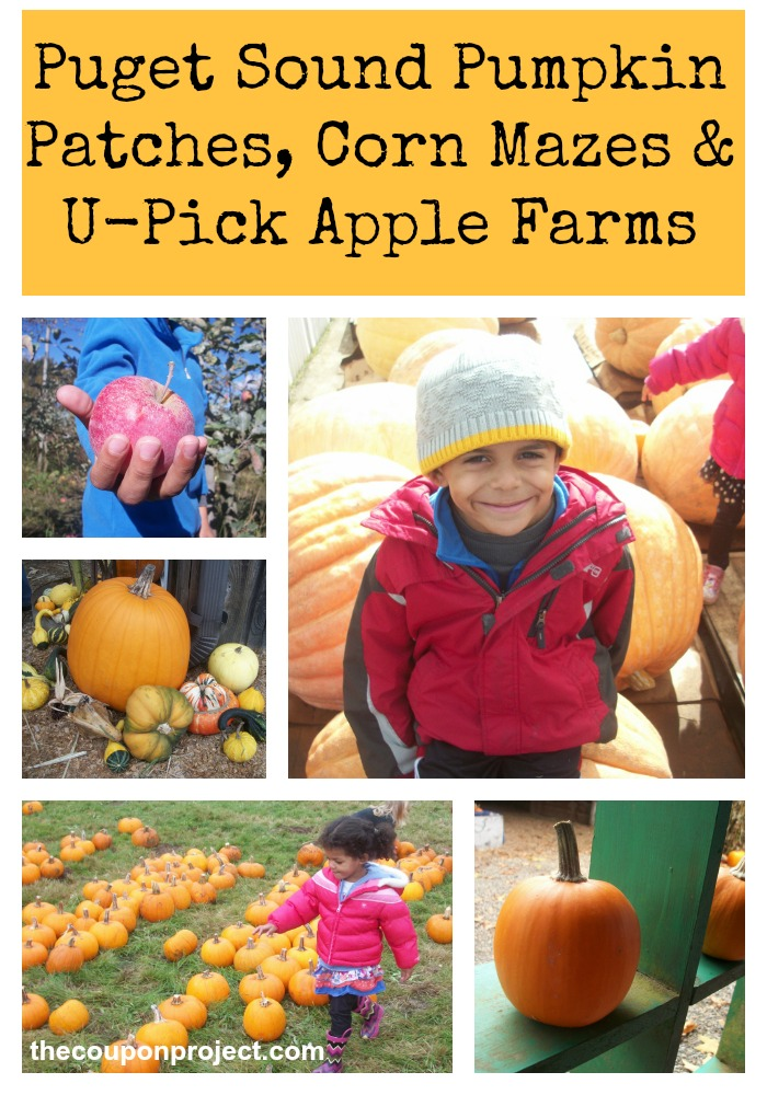 Puget Sound Pumpkin Patches, Corn Mazes, and U-Pick Apple Farms | The Coupon Project