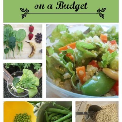 Healthy Living on a Budget - The Coupon Project