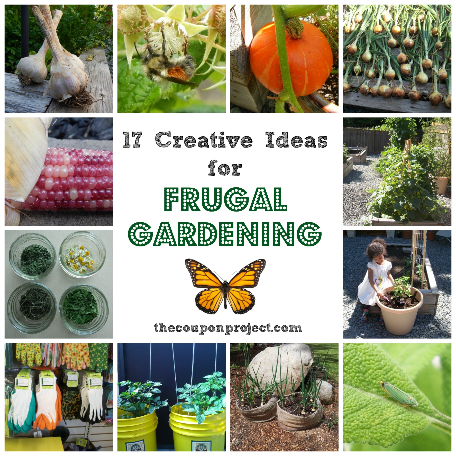 17 Creative Ideas For Frugal Gardening | The Coupon Project