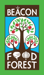 Beacon Food Forest Seattle