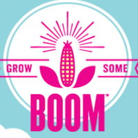 *Back Again* Free Popcorn Seeds for Your Garden from Angie's Boomchickapop