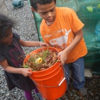 Early Spring Gardening – Berries, Composting, Blossoms!