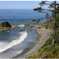 Pacific Northwest Getaways for Less: Ocean Hotel, B&Bs, Seattle Hotels & More!