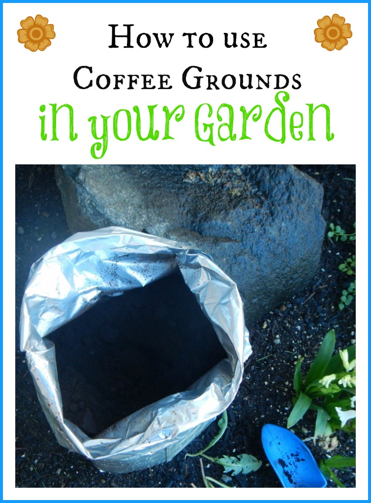 How to use coffee grounds in your garden for How to use coffee grounds in garden