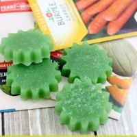 How to Make Gardener's Soap (It's Easy!)