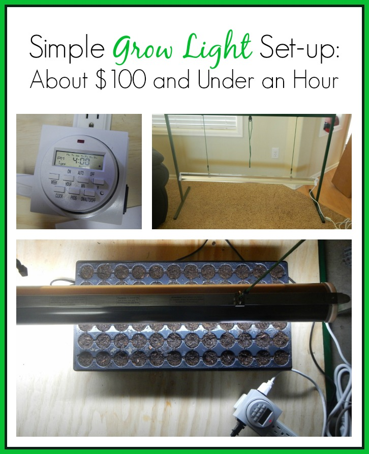 Simple Grow Light Set up