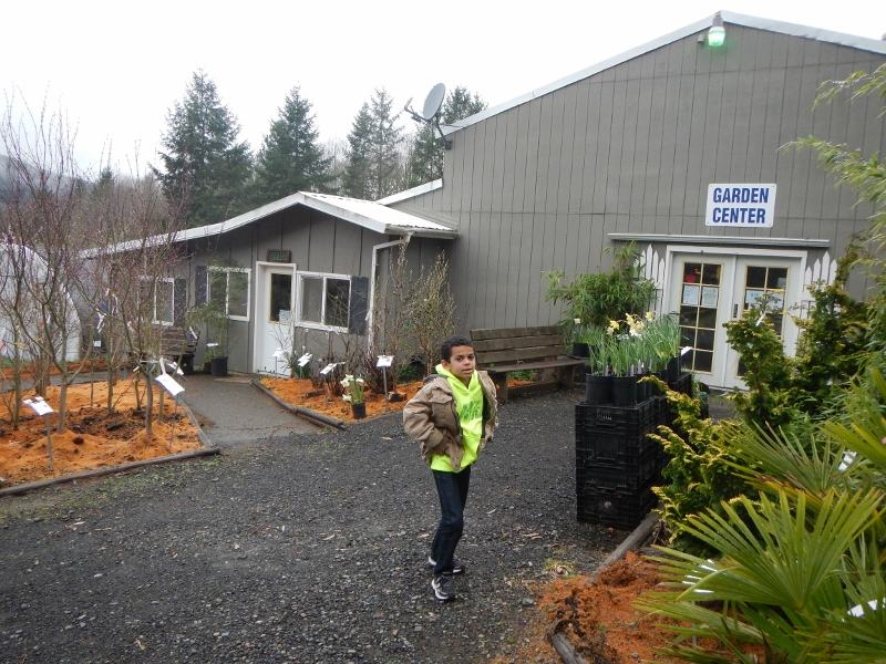 Our Visit To Raintree Nursery My Favorite Fruit For Pnw