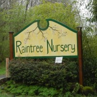 Our visit to Raintree Nursery: My Favorite Fruit Nursery for PNW Gardens!