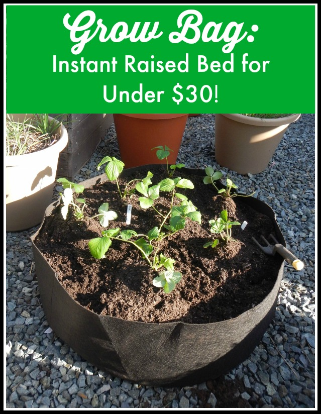 Grow Bag Instant Raised Bed Garden For Under 30