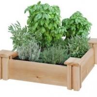 Home Depot: 16″ x 16″ Cedar Raised Garden Bed for $19.97