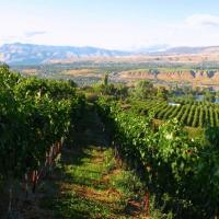 Pacific Northwest Getaways for Less: Wine Country, Ocean Shores, Mt Rainier & More