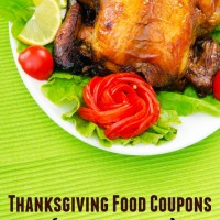 Thanksgiving Food Coupons – Extensive List!