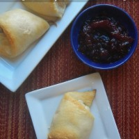 Leftover Turkey Ideas: Turkey Salad with Cranberry Vinaigrette & Turkey Roll-ups