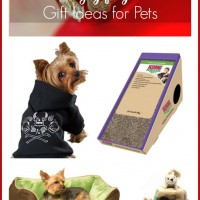 Holiday Gift Guide: Gift Ideas for Pets