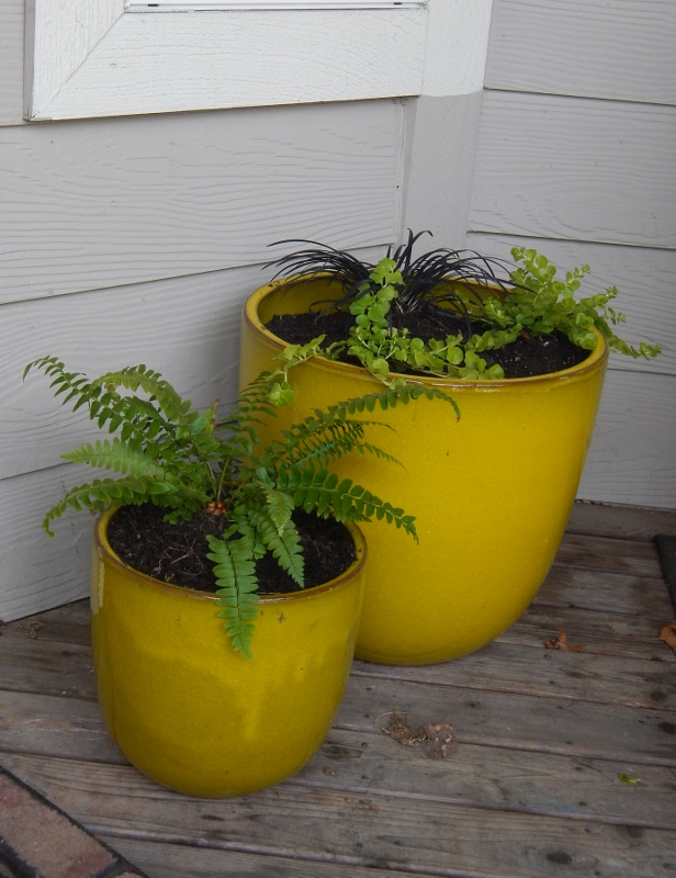 Punchy colored planters on a porch.