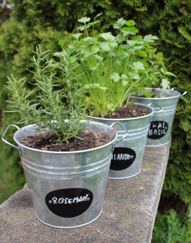 A simple & perfect herb garden