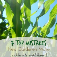 7 Top Mistakes New Gardeners Make (and how to avoid them!)