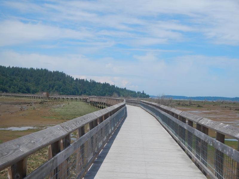 Boardwalk at Nisqually Wildlife Refuge