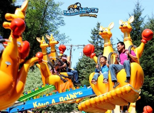 Wild Waves Theme Park Coupons And Discount Tickets 2019