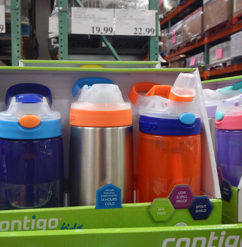 Kids' Thermoses at Costco