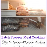 This Week's Freezer Meal Prep: 40 Pounds of Chicken