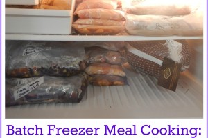 freezermeals