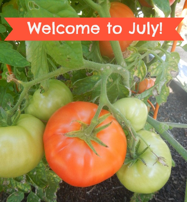 Welcome to July