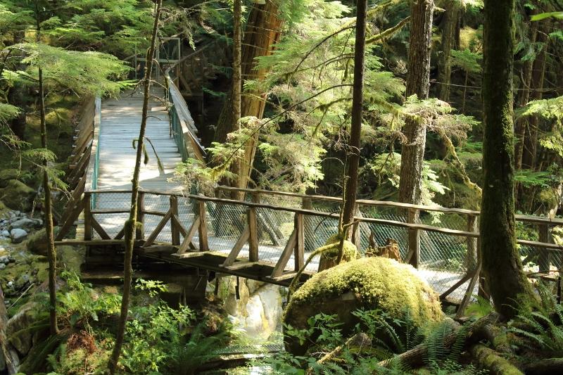 Falls Hike at Gorge Dam