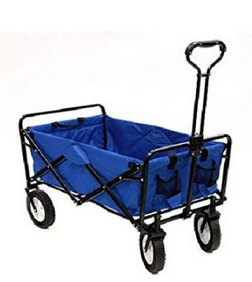 Rolling Sports Cart