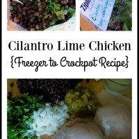 Cilantro Lime Chicken – Freezer to Slow Cooker Recipe