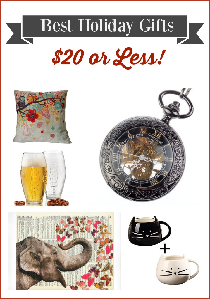 Best Gift Ideas $20 or Less