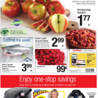 Fred Meyer Ad 11/8