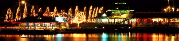 ivar's clam lights