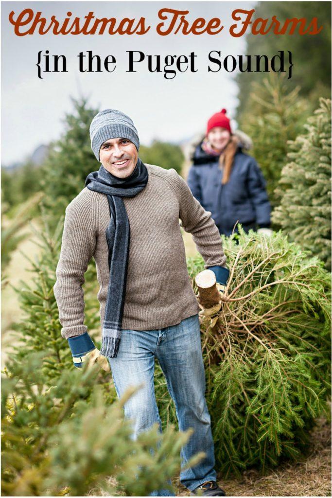 Puget Sound Christmas Tree Farms (termasuk pohon U-cut!)
