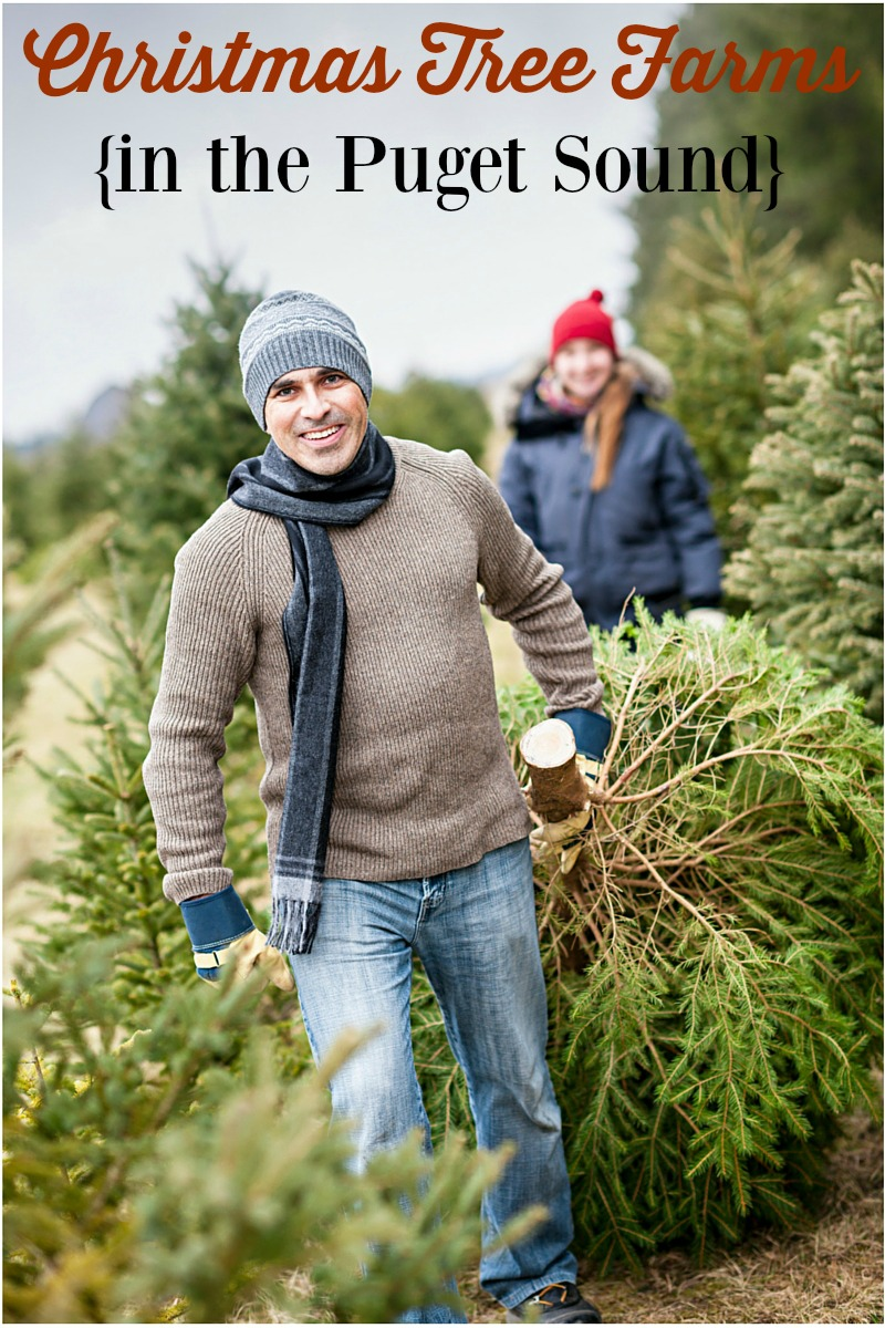 Puget Sound Christmas Tree Farms (including U Cut Trees!)