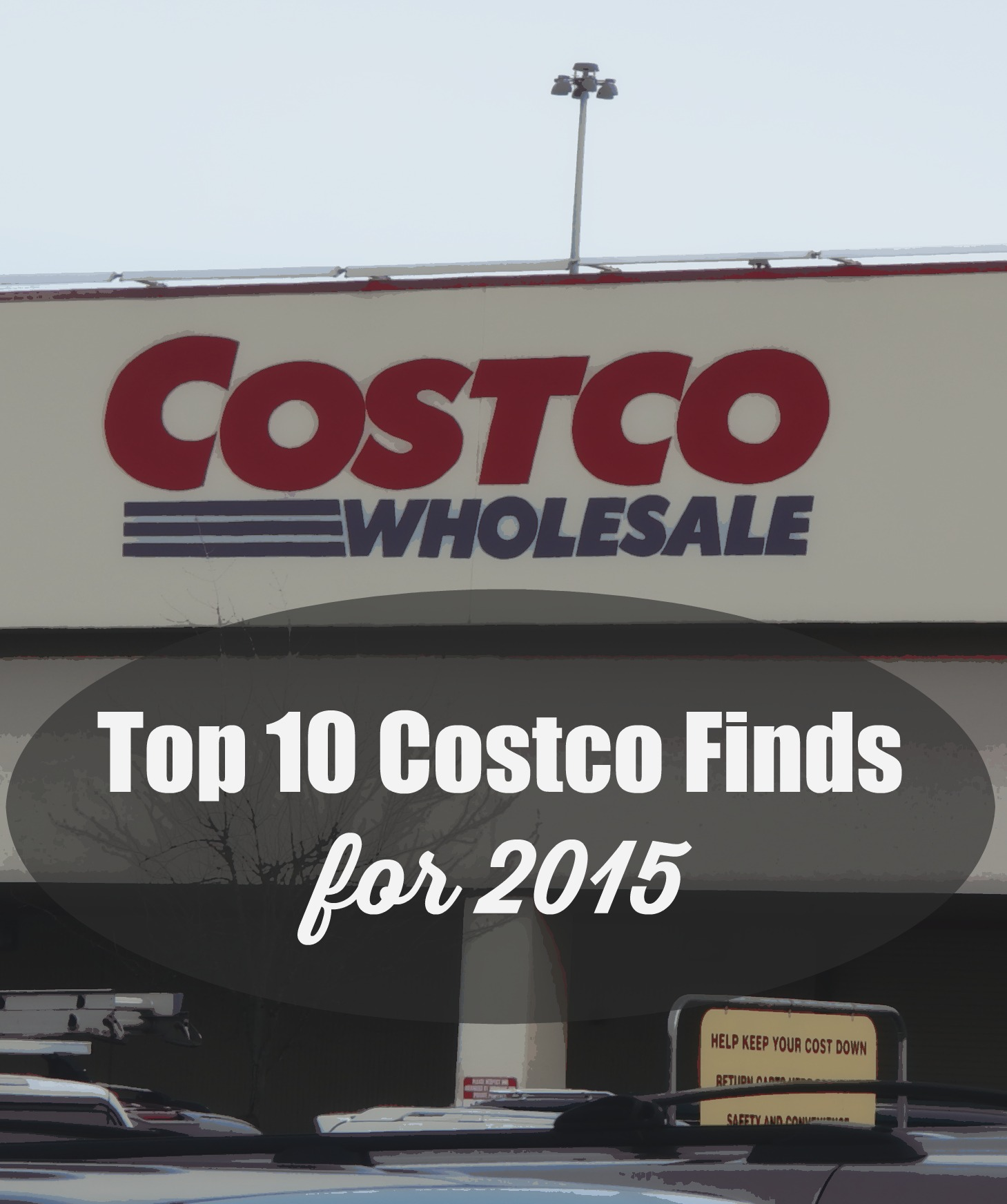 Top 10 Costco Finds For 2015