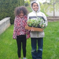 Planning and Planting the Garden with the Kids