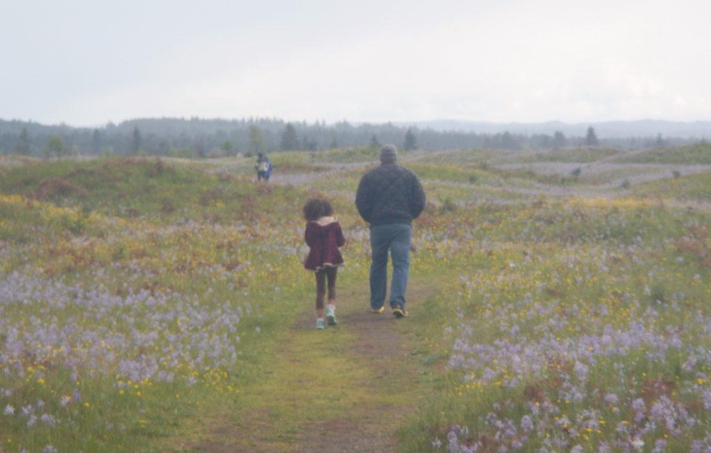 Trails at Mima Mounds