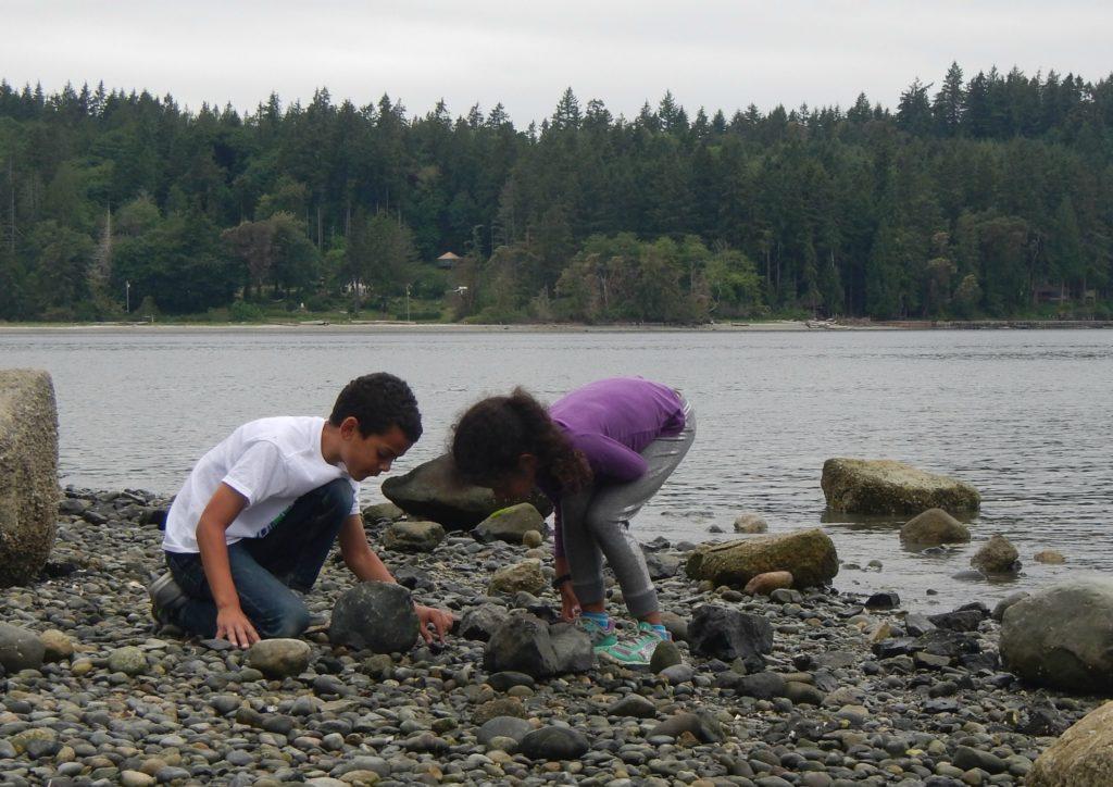 Crab Hunting at Penrose Point