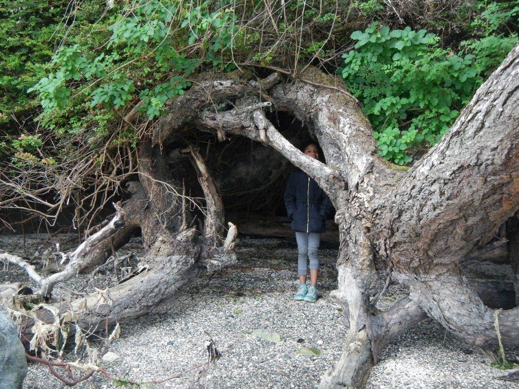 Penrose Point Beach Caves