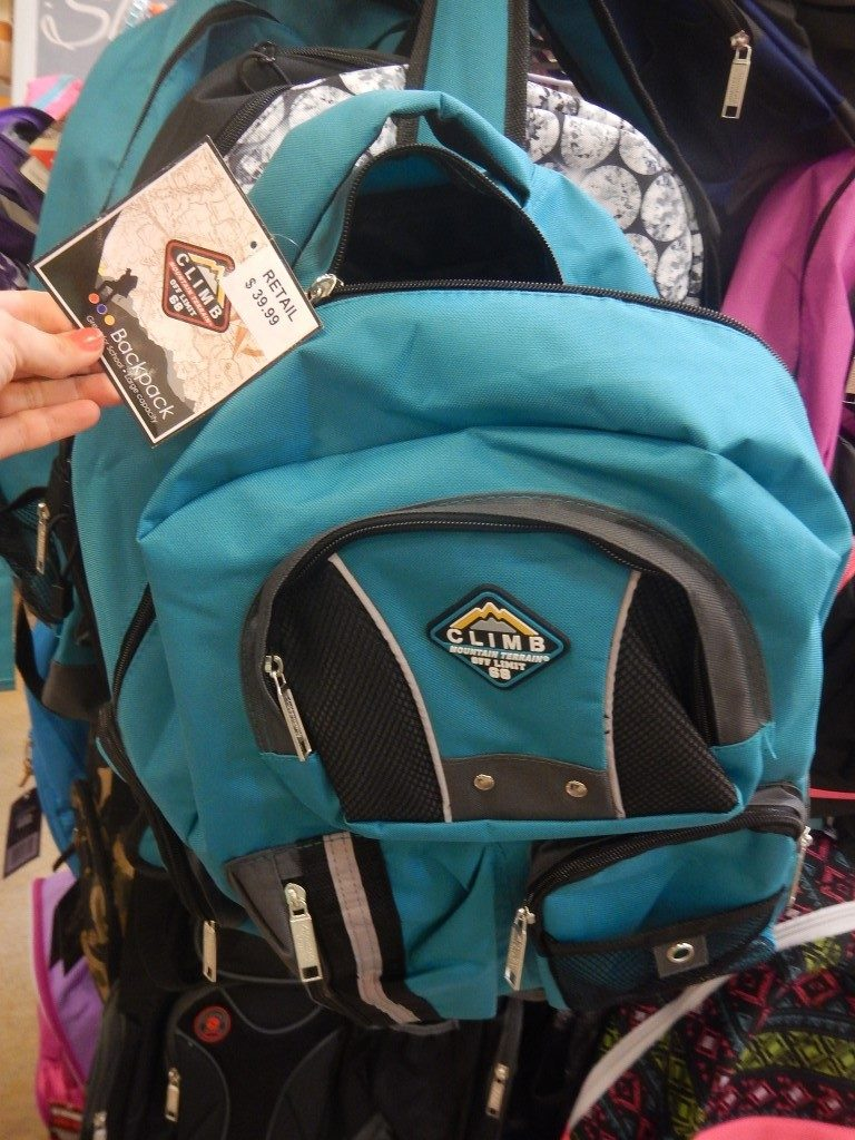 Climb Backpack at Fred Meyer