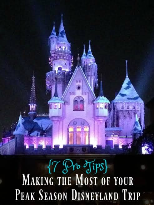 7 Pro Tips for Maximizing your Peak Season Disneyland Vacation